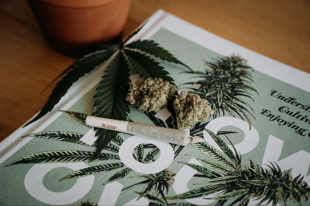 Cannabis on a book Travelling in Australia with Medicinal Cannabis